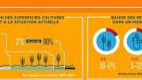 infographieBM