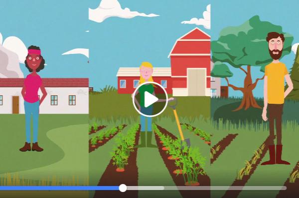 screenshot vidéo agriculture